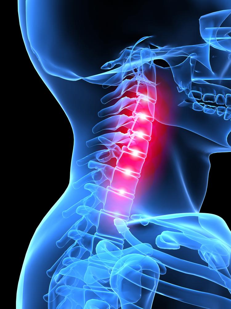 La spina dorsale nel mezzo di un dorso e in una vita fa male